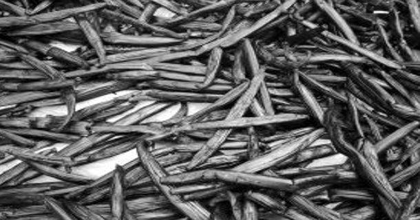 Firma produkująca dodatki dla przemysłu cukierniczego